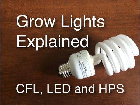 Grow Lights Explained CFL LED and HPS easy and cheap to efficient and expensive - YouTube