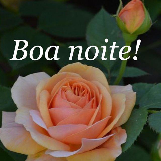 #mulpix Deus está dentro de nós em todas as circunstâncias da vida. Procure não esquecer está verdade, em nenhum momento de sua vida.Deus está dentro de você.  #boanoite  #fé  #bomdescanso  #amor  #alecrimdocampo