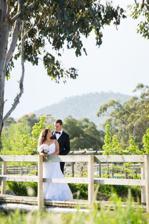 Garden wedding photos on our bridge