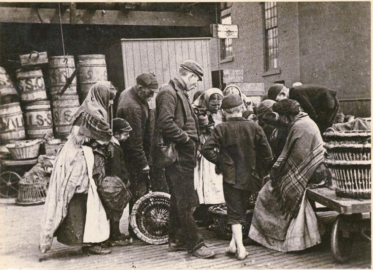 fruit seller newcastle 1800 - Google Search