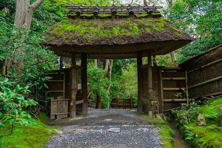 """梅雨にしか見られない""""神の庭""""。雨に濡れる「祇王寺」が美しすぎる2016"""