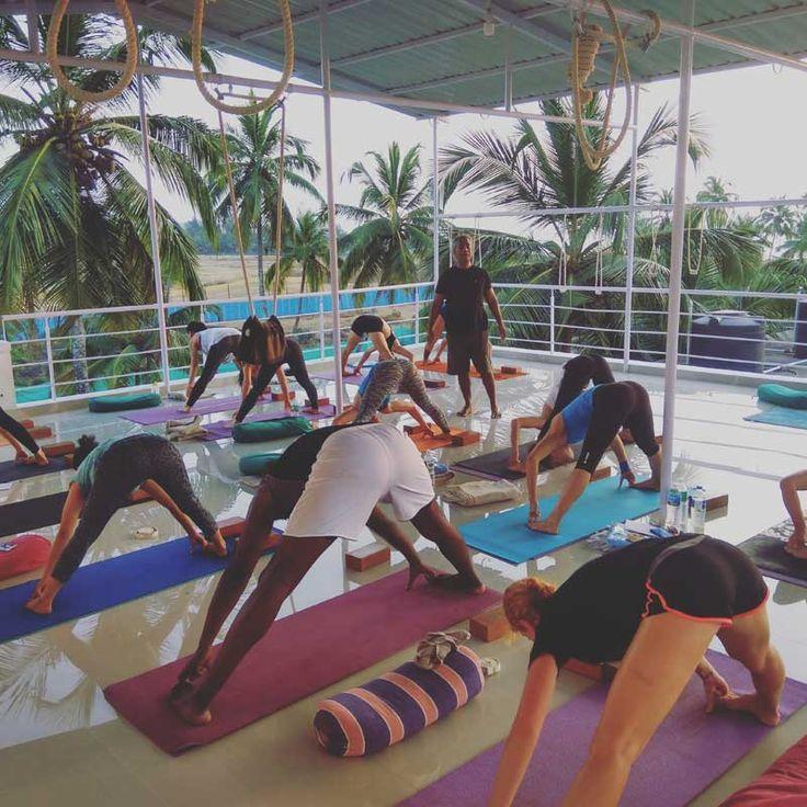 How Yoga Teacher Training Courses Improve Your Yoga Practice