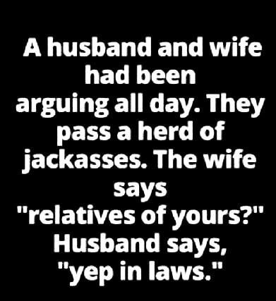 """A husband and wife had been arguing all day. They pass a herd of jackasses. The wife says """"relatives of yours?"""" Husband says, """"yep, in-laws!"""" Too funny!"""