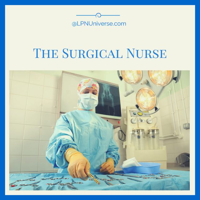 specialty nurses: a collection of education ideas to try | labor, Human Body