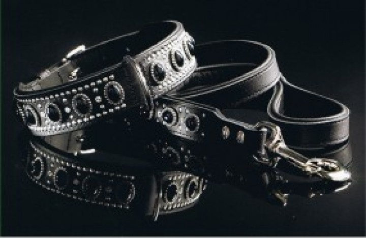 hunter dog collars black label - Google Search