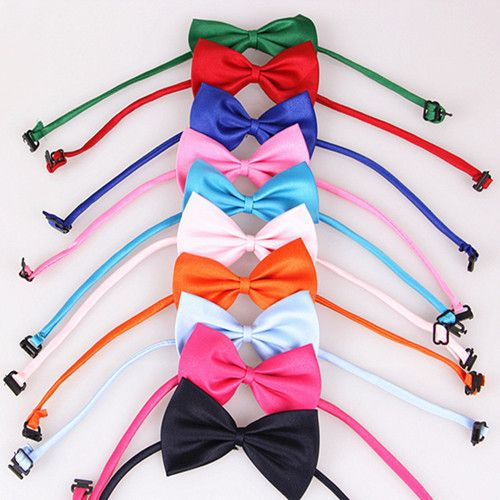 (5 Pieces/lot)New Fashion Pet Product Most Colors Dog Bow Tie Necklace Dress Cat Puppy Collar Chain // FREE Shipping //     Get it here ---> https://thepetscastle.com/5-pieceslotnew-fashion-pet-product-most-colors-dog-bow-tie-necklace-dress-cat-puppy-collar-chain/    #cat #cats #kitten #kitty #kittens #animal #animals #ilovemycat #catoftheday #lovecats #furry  #sleeping #lovekittens #adorable #catlover