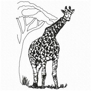 African Giraffe EMBROIDED http://www.embroiderydesignsfeathers.com/big-5-animals/