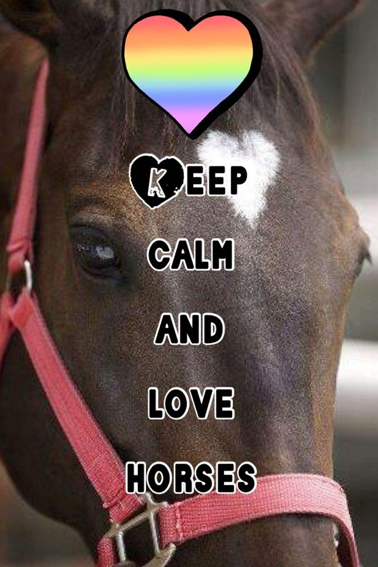 Ceep calm and love horses❤❤❤