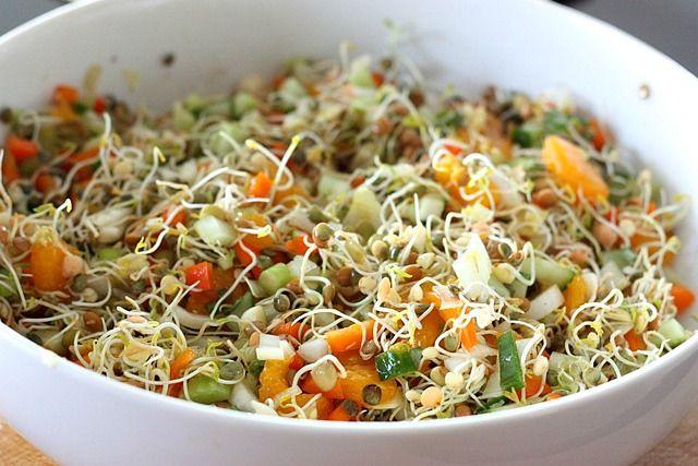 Recipe and Benefits of Mix Sprouted Pulses Salads in Marathi अंकुरलेले (मोड आलेले ) विविध  कडधान्याचे सलाड तयार करायची पध्दत व फायदे मराठी भाषेत