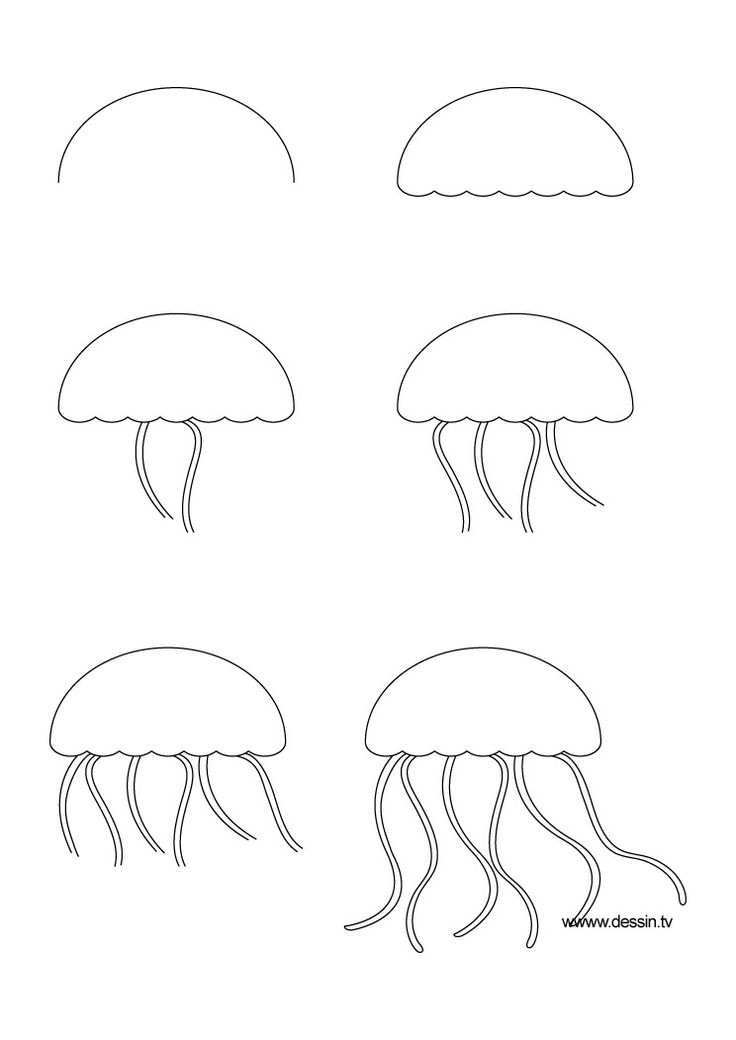 learn how to draw a jellyfish with simple step by step instructions wolf drawingskid