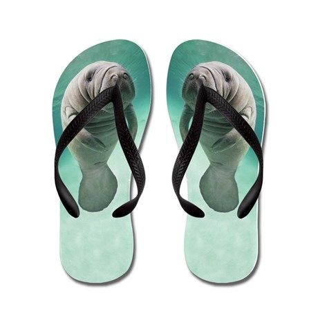 My manatee images on products from Cafepress.com!  Cute baby manatee flip flops are a unique fashion statement