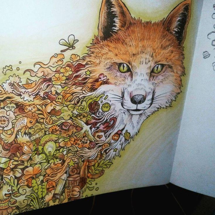 «Livro de colorir  #animorphia»