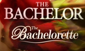 I got The Bachelor or Bachelorette! We Know Your Favorite Reality TV Show Based On Your Favorite Beyoncé Song