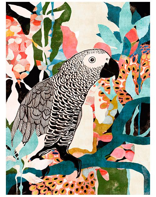 Parrot In The Jungle   Cozamia