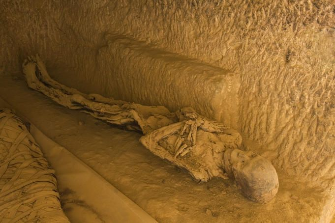 Egypt Image - Mummies in tomb, Egypt - Lonely Planet