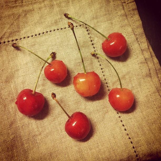 Cherries | sketchtree