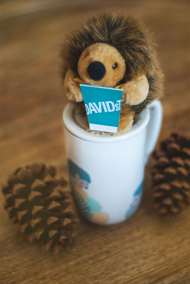There's nothing like having a tea buddy to share a break with! Now you can have one right on your mug with this adorable Hedgehog Colour Changing Nordic Mug.