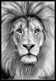 thigh lion tattoo - Google Search