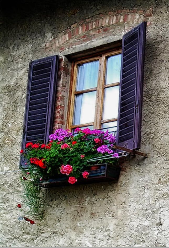 Typical Tuscan shutters with flowers.