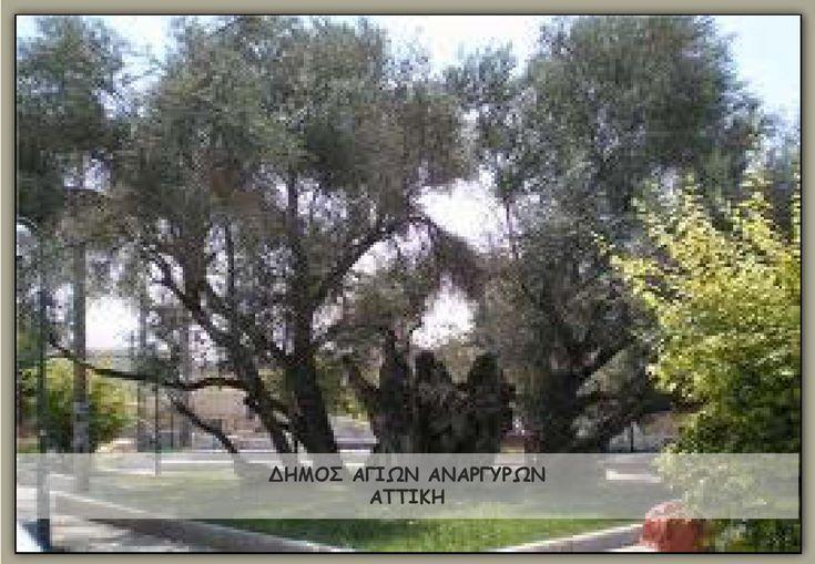 Parartima b- Presentation Agioi Anargyroi-VCH  Μελέτη για το Δήμο Αγ. Αναργύρων- Αττικής