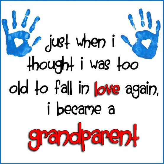 Image result for quotes about grandchildren