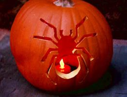 Muuhaha Halloween is coming...Pumpkin-Carving Tips and Tools : Decorating : Home & Garden TelevisionPreserves Carvings, Carvings Templates, Petroleum Jelly, Carved Pumpkins, For Kids, Beginners Pumpkin, Halloween Pumpkin Carvings, Art Preserves, Carvings Pumpkin
