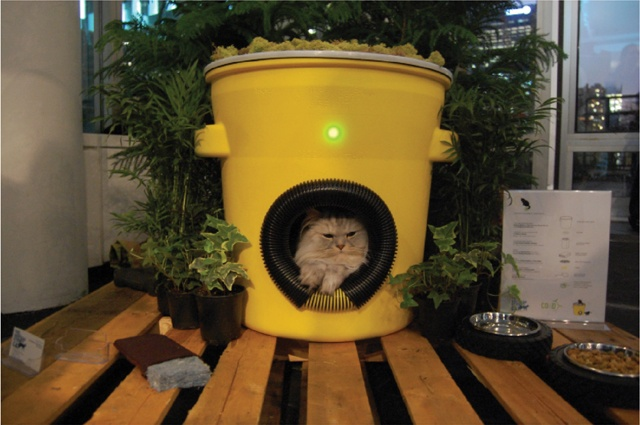 A way to monitor neighborhood feral cat numbers. One of the simpler smarter ways.