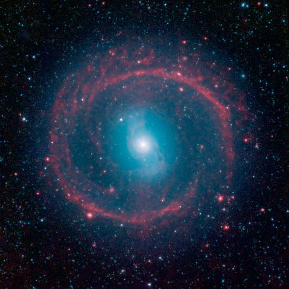 An infrared shot of galaxy NGC 1291. The outer ring, colored red in this view, is filled with new stars that are igniting and heating up dust that glows with infrared light. The stars in the central area produce shorter-wavelength infrared light than that seen in the ring, and are colored blue. This central area is where older stars live, having long ago gobbled up the available gas supply, or fuel, for making new stars.