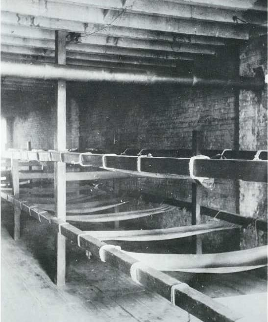 Bunks in a Seven-Cent Lodging House, Pell Street by Jacob Riis. Jacob A. Riis was a police reporter in 1877 and decided to document the people living in New York's East Side slum district. His book, How the Other Half Lives: Studies Among the Tenements of New York, was the result of these photographs and was published in 1890. With remorseless candor, he documents the filth, disease, exploitation, and overcrowding that characterized the experience of more than one million immigrants.