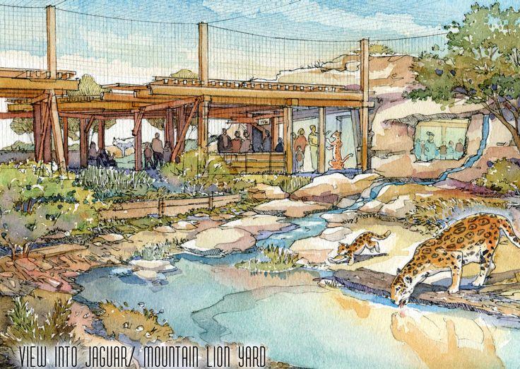 El Paso Zoo Mountain Lion and Jaguar - WDM Architects