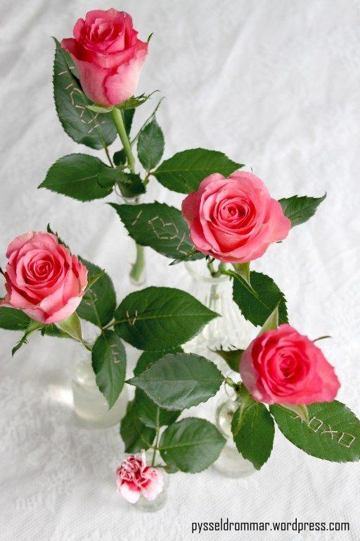 Brodera på alla hjärtans dag-rosen, Alla hjärtans dag, blommor. Rose with embrodery. Valentine flowers.