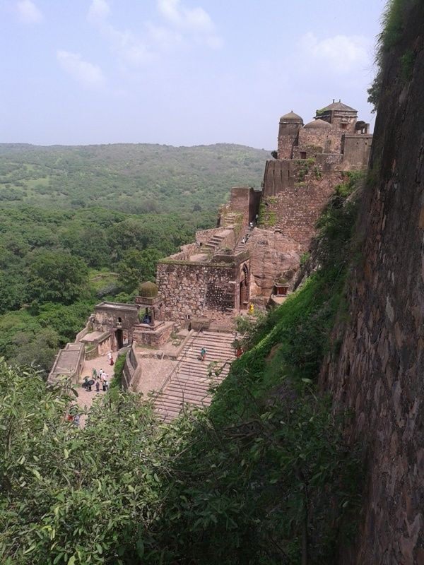 Ranthambore #Fort was founded by nagils jat in 944 AD. The fort is 700 feet above the surrounding plain. Its earlier name of the fort was Ranastambha or Ranastambhapura , it is known as also Pillars of war. In 12th century, it was associated with Jainism during the reign of Prithviraja I of #Chauhan dynasty. A temple of Mallinatha was built in the fort In #Mughal period.