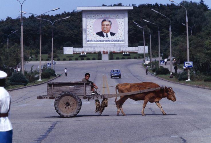 Краткий пересказ книги Барбары Демик «Повседневная жизнь в Северной Корее»