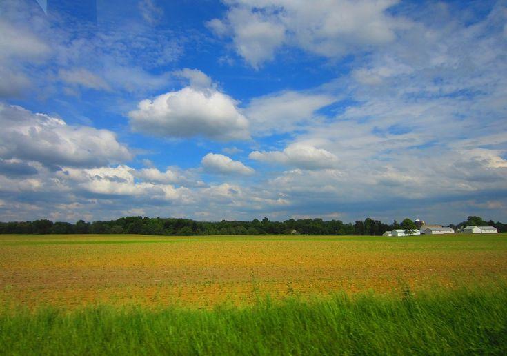 Wide Open Fields by TheParanoidPig on DeviantArt