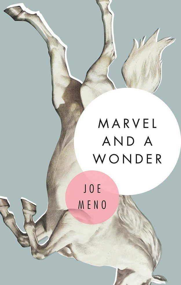 Marvel and a Wonder by Joe Meno
