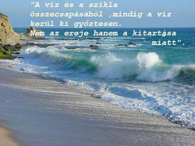 https://www.facebook.com/boszikam/photos/a.119175538199967.20331.109364722514382/561304853987031/?type=3
