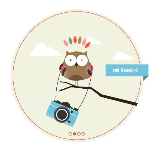 Photo Imaging Owl