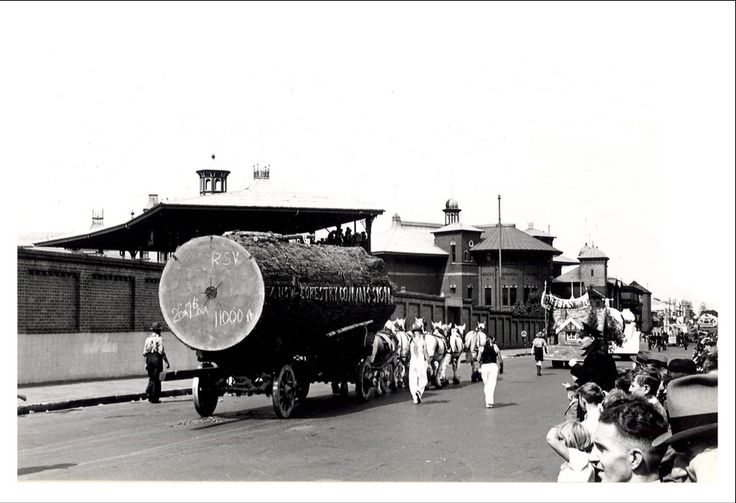 """Image 21806134 - The Forestry Industry float, which formed part of the """"Australia's March to Nationhood"""" parade on January 26th, 1938. This image was taken in Driver Avenue, Moore Park. [RAHS Australia Day 1938 - Sesquicentenary Celebrations Collection]"""