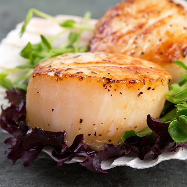 A seared scallop recipe topped with a tomato basil sauce.. Seared Scallops Recipe from Grandmothers Kitchen.