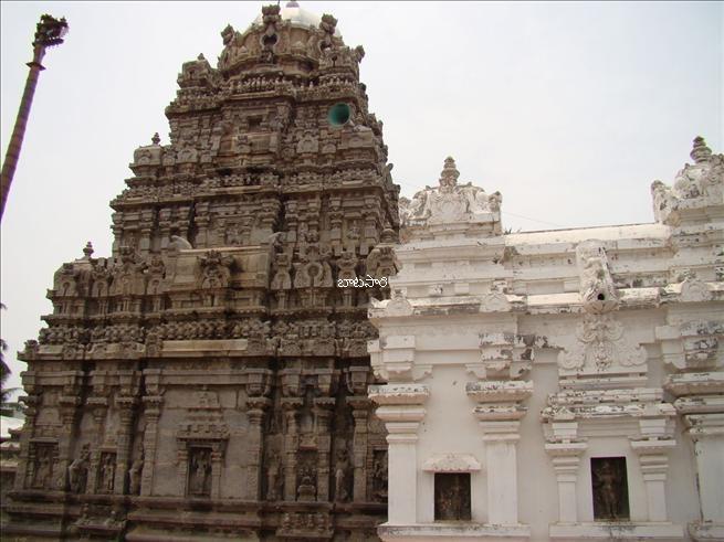 The Srikurmam temple near Srikakulam, where Lord Vishnu is worshipped as Kurmavatara