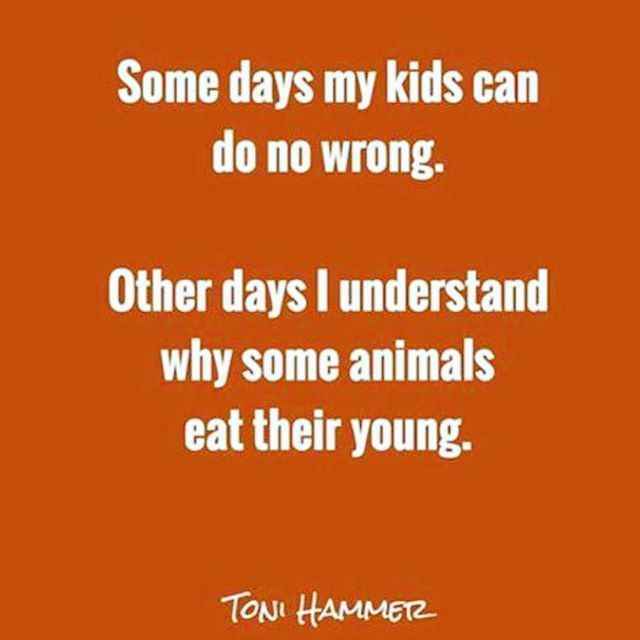 Some Days My Kids Can Do No Wrong Other Days I Understand Why Some Animals Eat Their Young What A Very True And Mom Life Quotes Motherhood Funny Mom Humor