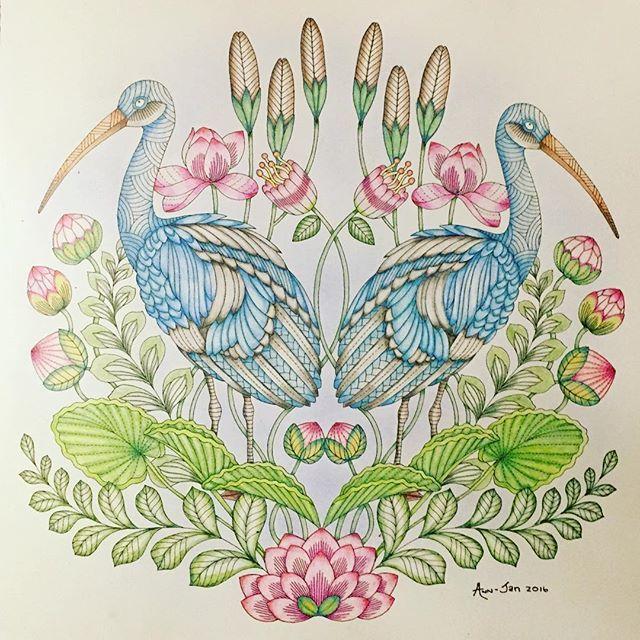 Storks From Millie Marottas Tropical Wonderland