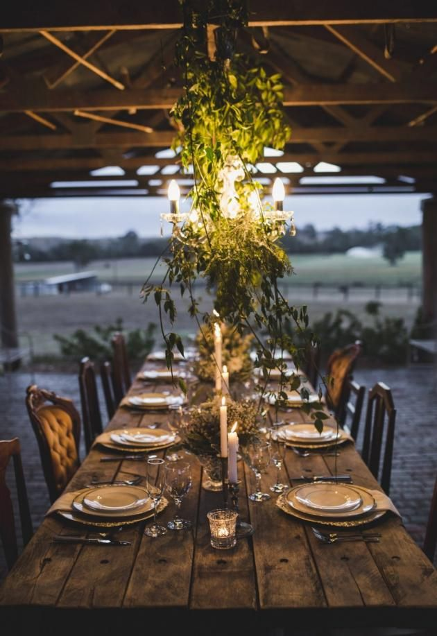 Gorgeous outdoor rustic venue. Love the exposed rafters and chandeliers with vines. Beautifully upholstered gold Victorian style chairs and ivory cream china on gold chargers. And there's no tablecloth but it works!