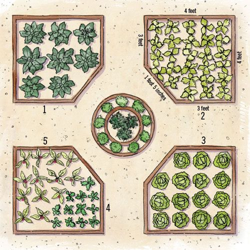 25 best ideas about potager garden on pinterest stone for Vegetable bed planner