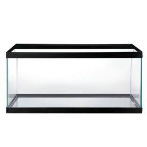 Grreat Choice® 40 Gallon Aquarium   Aquariums   PetSmart