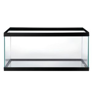 Grreat Choice® 40 Gallon Aquarium | Aquariums | PetSmart