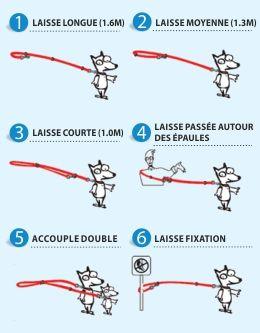 Voiçi le couteau suisse de la laisse pour chien! Avec ses 6 différentes possibilités d'attacher votre compagnon, cette laisse multifonction peut rivaliser avec les meilleures gadgets de l'agent 007...