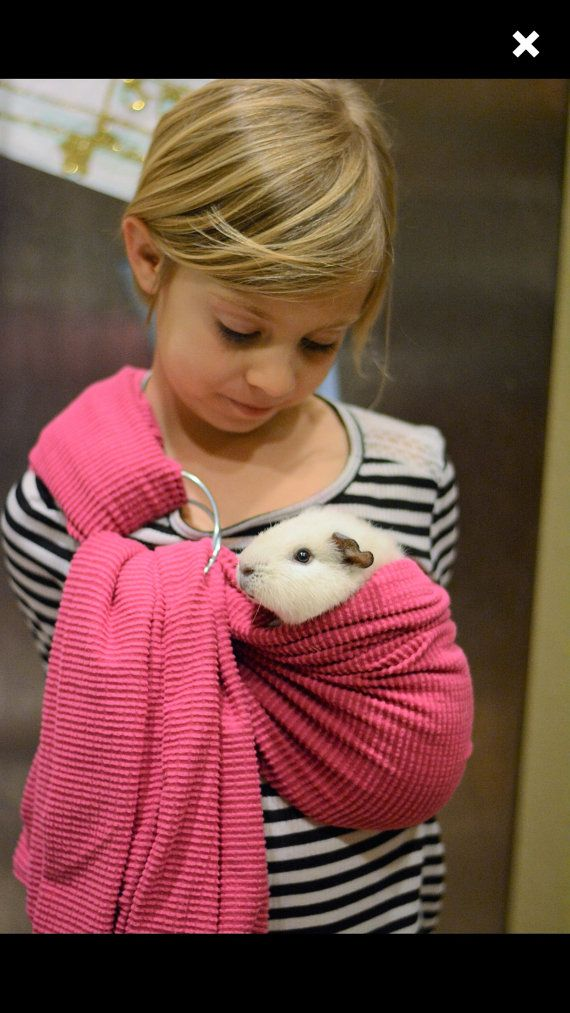 Pink adjustable guinea pig sling small pet carrier by BangBang714