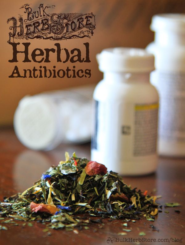 Are There Really Herbal Antibiotics? - Bulk Herb Store Blog - Why are antibiotics dangerous? What herbs can you use as a substitute?