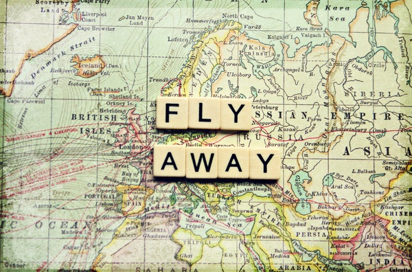fly away Stretched Canvas